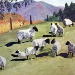 Sheep in Autumn