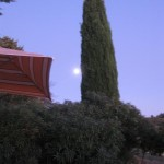 A full moon on our last night and dinner by the pool.