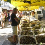 Market day in a small town on the road to Avignon.